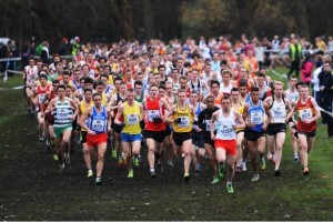 Liverpool cross country 2013